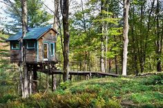 The Fern Forest Treehouse in Lincoln, Vermont | 27 Tiny Houses You Can Actually Stay In
