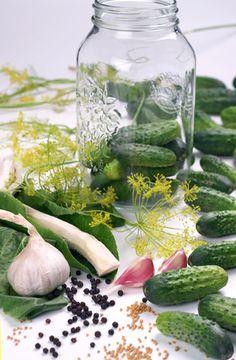 Sposób na ogórki małosolne Nasu, Pickles, Cucumber, Recipes, Food, Essen, Meals, Ripped Recipes, Eten