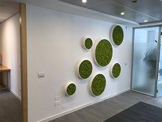 Home Building Design, Home Room Design, Foyer Design, Ceiling Design, Moss Wall Art, Wall Art Decor, Office Cabin Design, Garden Wall Designs, Wall Panel Design
