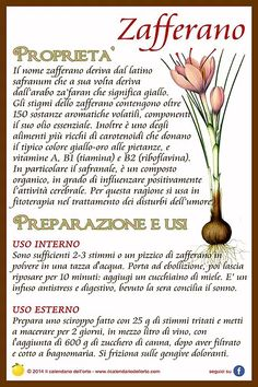 Il Calendario dell'Orto | Fiori felix Natural Life, Natural Health, In Natura, Plants Are Friends, Wellness Fitness, Medicinal Herbs, Nutrition Information, Vegan Lifestyle, Eating Well