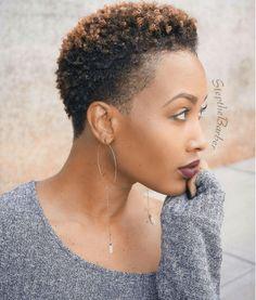 Tapered Cut Elegant Beauty Source: stepthebarber  #naturalhairmag