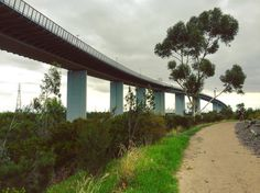 Not far from here, lies a serene and beautiful pathway, winding through Westgate Park, beneath the undulous Westgate Bridge I cross every morning on my way to our popup on Level 1 at Highpoint. Perfect track for a cycle or walk! Come visit our popup today, grab your new favourite canvas bag, take your lunch, drink bottle and whatever else you need for the day and get down there!