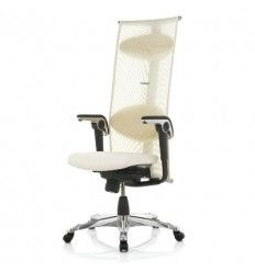 HAG Inspiration is a modern executive office chair. The classic sleek design makes this a timeless executive office chair that makes the right impression. Best Ergonomic Office Chair, Ergonomic Chair, Sitting Posture, Executive Office Chairs, Workplace Design, Chair Design, Inspiration, Biblical Inspiration, Inspirational