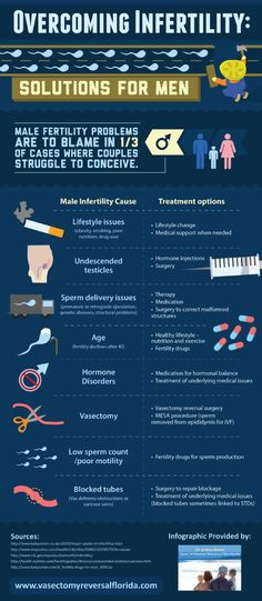 Many patients who undergo a vasectomy wish to reverse the procedure in the future. A vasectomy reversal surgery can provide the solution these patients seek. Get more facts on this infographic from a vasectomy reversal surgeon in Florida. Male Infertility Causes, Infertility Treatment, Fertility Doctor, Fertility Help, Fertility For Men, Natural Fertility, Fertility Problems, Pregnancy Calculator, Pregnancy
