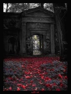 Red Leaves and the Gothic Gateway, in the Woods.