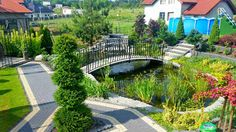 Oczko wodne w ogrodzie miejskim,Projektowanie ogrodów Kielce, ogrody Kielce