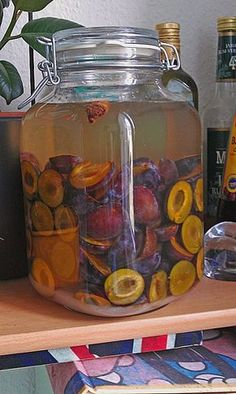 plum liqueur - Healthy Drinks to Lose Weight Paleo Food List, Paleo Meal Prep, Kiwi Smoothie, Protein Smoothies, Paleo Coffee, Kefir Recipes, Juice Recipes, Paleo Kids, Gourmet