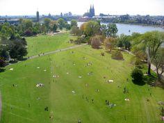 Im Herzen von Köln präsentiert sich in Deutz zwischen Hohenzollernbrücke und Mülheimer Hafen auf einer Fläche von 40 Hektar eine abwechslungsreiche Parklandschaft. Der Park steht seit 1989 unter Denkmalschutz und war bereits 2 mal Schauplatz der Bundesgartenausstellung - 1957 und 1971. Mit der Seilbahn können Sie vom Rheinpark bis an den Kölner Zoo über den Rhein schweben. Direkt am Rhein gelegen, hat der Rheinpark einen hohen Erholungswert. Mit seinen riesigen Spiellandschaften und Wiesen…