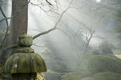 Japanese Garden by NeilAlexanderD, via Flickr ( flickriver.com/search/japanese+gardens/, 2013 )