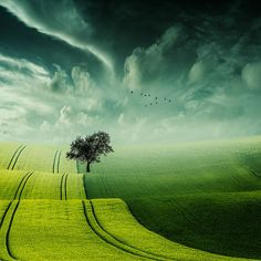 Christine Ellger, 1948 | Surrealist Fine Art Photographer | Tutt'Art@ | Pittura…