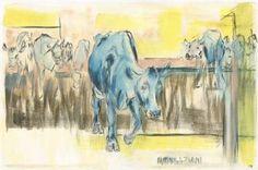 Cattle Congregation