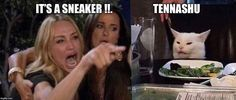 woman and cat meme template \ woman and cat meme ; woman and cat meme template ; woman and cat meme video ; woman and cat meme art ; woman and cat meme wallpaper ; woman yelling at cat meme ; woman screaming at cat meme ; cat meme with woman Teen Diy, Funny Quotes, Funny Memes, Hilarious, Jokes, Funny Humour, Stupid Funny, White Cat Meme, Karen Memes