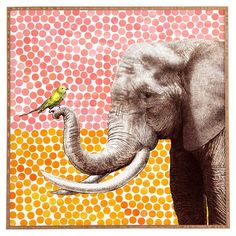 Lend a touch of exotic appeal to your living room or master suite with this eye-catching canvas print, showcasing a delightful bird and elephant motif.