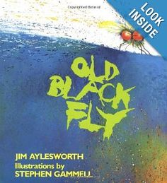 Adjectives  Old Black Fly: Jim Aylesworth, Stephen Gammell: 9780805039245: Amazon.com: Books