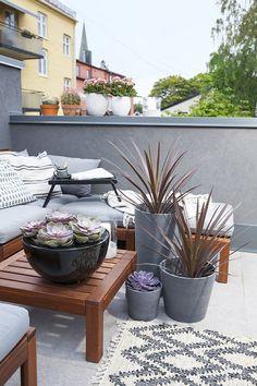 Kasser, Planters, Gardening, Interior, Zen, Outdoor, Home, Decor, Ideas