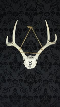Check out this item in my Etsy shop https://www.etsy.com/listing/612275881/mars-mercury-skull-cap-w-antlers