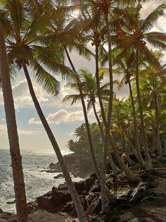 Red Road in Puna, Big Island, Hawaii.