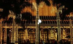 Entrance to Shopping Higienópolis at night.... Very lovely.