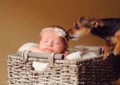 24 recién nacidos que tuvieron que compartir protagonismo en su primera sesión fotográfica