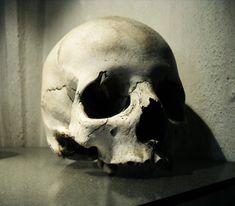 Skull (Sedlec Ossuary) by NaamahVonhell