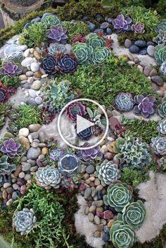 Garden Pavers, Garden Landscaping, Landscaping Ideas, Small Front Yard Landscaping, Rock Garden Design, Diy Wood Projects, Succulents Garden, Garden Art, Garden Ideas