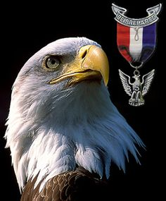 Eagle Scout Tie - Bing Images