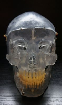 Vintage articulated medical and dental plastic skull.
