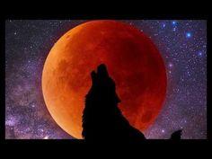 c050a461f2bab قمر الذئب الدموي العملاق بعد سويعات وهل سيحدث كوارث طبيعية مدمرة مثل  الزلازل والبراكين