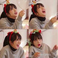 Blackpink house x helium song 😂 Yg Entertainment, South Korean Girls, Korean Girl Groups, Black Pink ジス, Blackpink Funny, Blackpink Memes, Blackpink Photos, Blackpink Fashion, Blackpink Jisoo