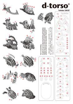 Tortoise104_chiso