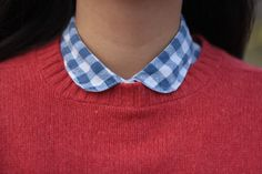 red sweater on adorable blue gingham collar.