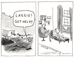 #pun #Lassie #humor #psychologist #therapy