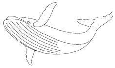 baleine10.gif (652×387)