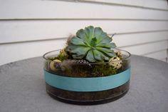 Påskepynt med sukkulent | Dora Dekorasjon Planter Pots, Design, Creative, Design Comics, Plant Pots