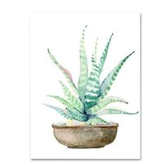 These watercolor-style cactus prints will add a fresh, modern pop of color to your decor. Material: Canvas poster Medium: Waterproof InkFrame Included: No Shape: Vertical Rectangle Cactus Painting, Cactus Wall Art, Watercolor Cactus, Canvas Art Prints, Painting Prints, Art Paintings, Spray Painting, Botanical Art, Poster Prints