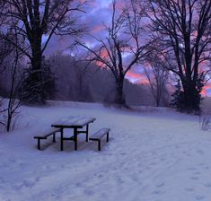 Scott Prior, Picnic Table in Winter, oil on panel, 10 x 10 Winter Snow, Winter Time, Aesthetic Photo, Aesthetic Pictures, Snowy Day, Winter Pictures, Winter Landscape, Picnic Table, Pretty Pictures