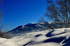 Mount Rainier, Mountains, Facebook, Travel, Viajes, Destinations, Traveling, Trips, Bergen