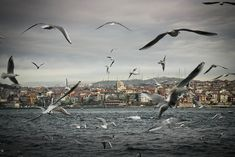 Adventure Trip: 33 charming image of the city of Istanbul Amsterdam Netherlands, Most Beautiful Cities, Istanbul Turkey, Nature Photos, Travel Around The World, Places To See, Adventure Travel, Paris Skyline, Travel Destinations