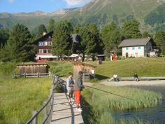 #Engadin #Alps #Swiss #Holidays #Nature www.lejdastaz.ch