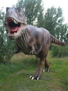 7. Tyrannosaurus Rex went to court.