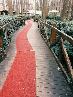 orman park ✌