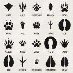 Für unser Lily Lux Notizbuch (Hoffmann & Campe 2010) habe ich Spuren von verschiedenen Tieren wie Adler, Biber, Braunbär, Dachs, Eichhörnchen, Elch, Ente, Eule, Frettchen, Frosch, Fuchs, Hase, Hund, Igel, Katze, Krähe, Kuh, Luchs, Marder, Maus, Otter, Pferd, Ratte, Rebhuhn, Reh, Reiher, Rennmaus, Rothirsch, Schaf, Schwein, Sperling, Taube, Waschbär, Wiesel, Wolf und Ziege illustriert. Dazu …