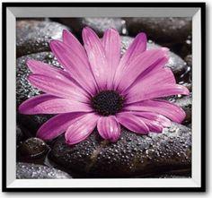 Schon HTI Living 3D Wandbild Blüten Jetzt Bestellen Unter: Https://moebel.