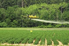 EPA gets it wrong on kids & drift #PAN #pesticides