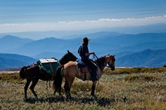 Photo: Cam Cope Courtesy of Bogong Horseback Adventures Australian Capital Territory, Australia Country, Snowy Mountains, Horse Riding, Alps, Dream Vacations, Road Trip, National Parks, Horses