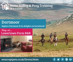 Horse Riding & Pony Trekking. Dartmoor. Explore Dartmoor & its delights on horseback. Stay at Lowertown Farm Bed and Breakfast, Poundsgate, Devon, Dartmoor National Park, England. Holiday Accommodation. Accepts Horses.