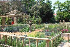 Urban Landscape Solutions - a Cape Town based company offering premier landscaping services. Herb Garden, Vegetable Garden, Landscape Solutions, Urban Park, Landscaping Company, Medicinal Herbs, Urban Landscape, Car Park, Fruit Trees