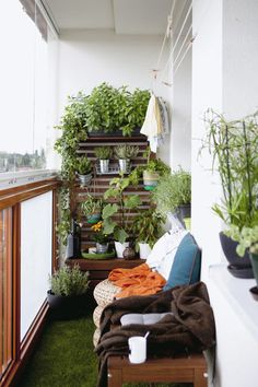 Keep it green – fill your balcony with plants. Don't let a small space stop you from creating your own version of the great outdoors – look to walls, ceilings and even floors for ways to fill it with green.