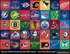 The Classic NHL / funny fish thing, minnesota north stars, quebec nordiques, atlanta thrashers, hartford whalers