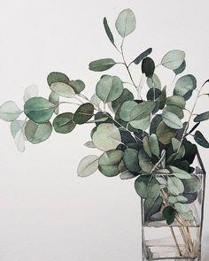 Time lapse video of me painting eucalyptus & leaves Watercolor Plants, Watercolor Leaves, Watercolor Artwork, Watercolor And Ink, Watercolor Artists, Watercolor Portraits, Watercolor Landscape, Illustration Botanique, Art Et Illustration